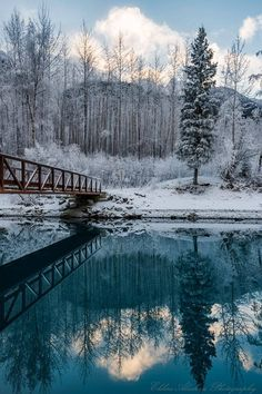 Eklunta Trailrace  Alaska