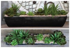 Succulent Arrangement!
