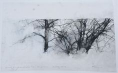 """Portrait of a Birch and Willow Tree, Drawing 61-09, 12"""" x 19.5"""", Graphite, Oil on Mylar"""