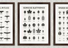 Poster mit Infografiken zur Bestimmung von Vögeln im Fluge, Blattformen und Tierspuren