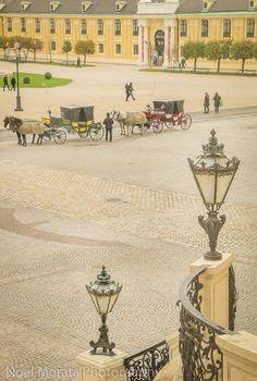 Carriage rides at Schonbrunn Palace, Vienna, AUSTRIA