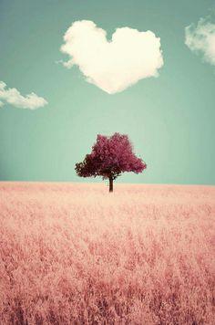 A natureza mostrando a sua magnitude. #coraçãonasnuves