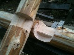 roundwood timberframing - Google Search