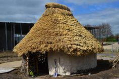 Stonehenge Neolithic Houses  An English Heritage experimental archaeology project to recreate houses from 2500 BC   'Dougal' : finished house no.1
