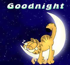 Afbeelding van http://enchulameelperfil.com/images/comentarios/saludos/Goodnight%20Garfield.gif.