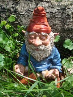 Meditating Gnome #funny #garden #gnome   When A Member Of My Garden Club Part 81