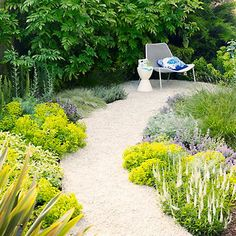 How to plant a garden path