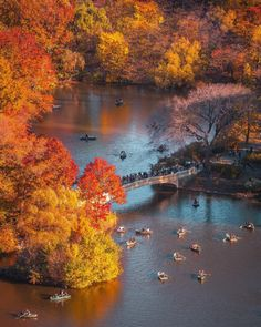 Bow Bridge Central Park by @212sid