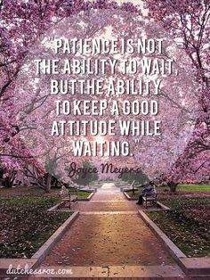 They say patience is a virtue....