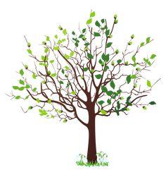 Resultado De Imagen Para Tree Clipart