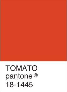 tomato red - my current favourite colour Red Paint Colors, Intense Love, Color Psychology, Color Swatches, Summer Colors, Pantone Color, Color Trends, Favorite Color, Mood