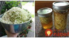 Na jar nazbierate, v zime zlatom vyvážite: Bazové kvety len zalejte a nechajte lúhovať, 1 lyžička a choroby sa vám budú vyhýbať!