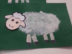 Tamponeren, hier is het wol van het schaap getamponeerd