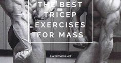 For many beginners, the assumption is that if you want big arms then you should spend a decent portion of your weight training time focusing on the biceps. While building big biceps certainly helps, the triceps actually make up a larger proportion of the Best Tricep Exercises, Triceps Workout, Building Biceps, Big Biceps, Biggest Biceps, Muscle Up, Muscle Food, Big Muscles, Bodybuilding Workouts