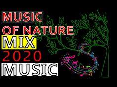 Rain Music, Yoga Music, Meditation Music, Music Mix, Rain Sounds, Sound Of Rain, Forest Sounds, Dream Music, Romantic Music