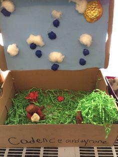 Environment dioramas for Tunisia, Peru, India and or Ukraine Grade 3, Third Grade, Primary Science, School Grades, Project Ideas, Projects, Social Studies, Peru, Ukraine