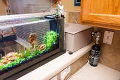 119 Besten Aquarium Bilder Auf Pinterest Fish Tanks Aquascaping