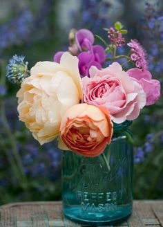 Bouquet of Rosa 'A Shropshire Lad', 'Graham Thomas', 'Lady Emma Hamilton' and 'Rainbow Knock Out' with spirea, sweet pea and allium in antique Mason jar Table Flowers, My Flower, Fresh Flowers, Beautiful Flowers, Flowers Garden, Cactus Flower, Exotic Flowers, Purple Flowers, Beautiful Pictures