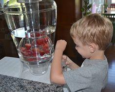 Montessori inspired self-serve fruit-infused water for preschoolers