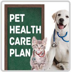 Pet Health Care Plan!