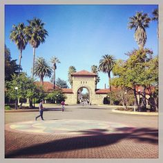 Stanford University under the palms Best University, Stanford University, Field Trips, Future Travel, High School Students, Vacation Destinations, Palms, Colorado, California