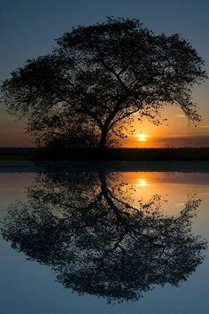 A sunset by Enzo Davide on bilder – Best Photography