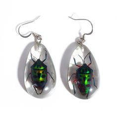 Bug Earrings Clear now featured on Fab.  Ewwwww!