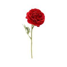 Blomst Ranunkel  #Kremmerhuset #Interior #Inspiration Interior Inspiration, Rose, Flowers, Plants, Pink, Roses, Florals, Plant, Flower