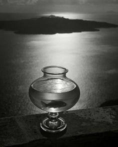 Goldfish bowl, Santorini Island, Cyclades, Greece, 1937 © Herbert List: Magnum Photos
