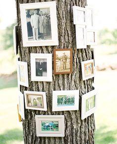Manualidades para bodas originales: árbol genealógico, una decoración de boda ideal para parques y jardines