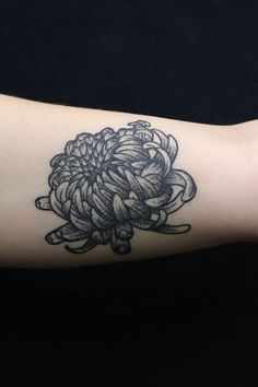 chrysanthemum tattoo  :::  Alf @ Dildo Tattoo  :::  Athens, Greece