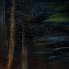Of trees and waterfalls (iii)
