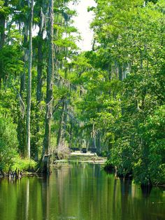 These 13 Jaw Dropping Places in Louisiana Will Blow You Away