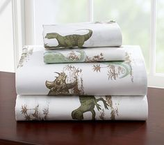 I love the Dinosaur Sheeting on potterybarnkids.com