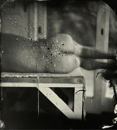 Sally Mann, Kingfisher's Wing, 2007 Gelatin silver print, 15 × 13 ½ inches × cm), edition of Sally Mann Sally Mann Photography, Photography Ideas, Wet Plate Collodion, Gagosian Gallery, Whitney Museum, Gelatin Silver Print, Kingfisher, Museum Of Modern Art, Double Exposure