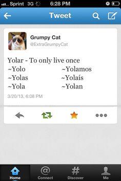 Conjugating yolo! Hahahah. Señora Cali and Señora Bontrager would appreciate this. Hahahah.
