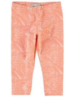 , Tropical Peach