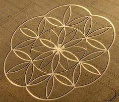 Geometria Sagrada, a Flor da Vida e a Linguagem da Luz. | NATUREZA EM NOSSA VIDA!                                                                                                                                                                                 Mais