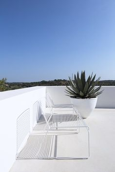 In the spectacular region of Algarve in the south of Portugal lies 'Casa Luum'; a holiday home composed of interweaving structures designed by Portuguese architect. Home Design, Portugal, Journal Du Design, Minimalist Interior, Algarve, Native Plants, Architecture, Portuguese, Exterior Design