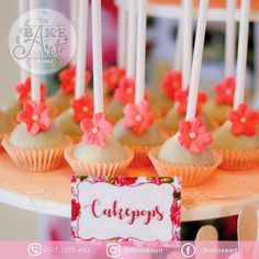 Cakepops 💕  #floral #dessertbuffet #dessertbuffetph #desserts #sweets #cakepops #events #eventsph #nagacity #Bicol #edibleart #thebakeart #thebakeartdb