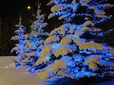 Christmas Magic! ☆ Blue Magic ☪ Light Magick ☼