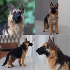 Needle felted super realistic German Shepherd Dog