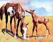 Rare Spanish Barb Breed  Prints for sales at etsy.com  Mare and Foal  8 x 12 $30 on fine art luster paper satin finish archival inks