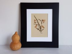 Pressed flower art 8x10 matted original pressed flower artwork made with real dried flowers - Dried flower art - Botanical specimen by BareFlower on Etsy