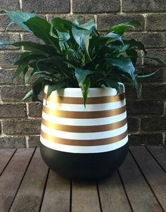 MEDIUM lightweight plant pot hand painted in black and white with rose gold metallic stripes. This is a striking design which will add a touch a glamour to your home! The material of the pot is fibreglass. Size is 35 x 35cm. As the pots are hand painted they are delicate and need to be handled with care. They are intended for indoor use or in a covered outdoor area. Plants should be removed from the pot for watering. The plant is for display purposes and is not included. The shipping rate...