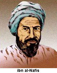 Ibn al-Nafis. The Arabian physician Ibn al-Nafis (1213-1288) was one of the earliest proponents of human dissection and postmortem autopsy, and in 1242, he was the first to describe the pulmonary circulation and coronary circulation of the blood, which form the basis of the circulatory system, for which he is considered the father of the theory of circulation. Ibn al-Nafis also described the earliest concept of metabolism, and developed new systems of anatomy and physiology to replace the…