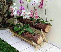 Resultado de imagen para orquideas em tocos de madeira