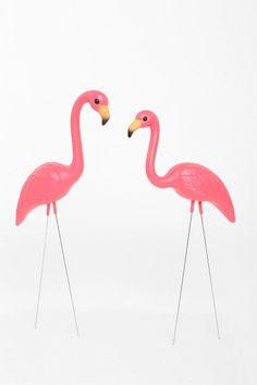1000 Images About Plastic Flamingo Decoys On Pinterest
