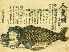 Unknown artist: 1805 illustration from the Waseda University Theater Museum showing a mermaid that was reportedly captured in Toyama Bay; according to the accompanying text, the creature measured 10.6 meters (35 ft) long.
