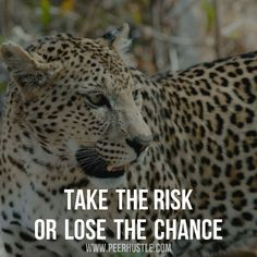 Take the risk.  Also checkout : @craft_success